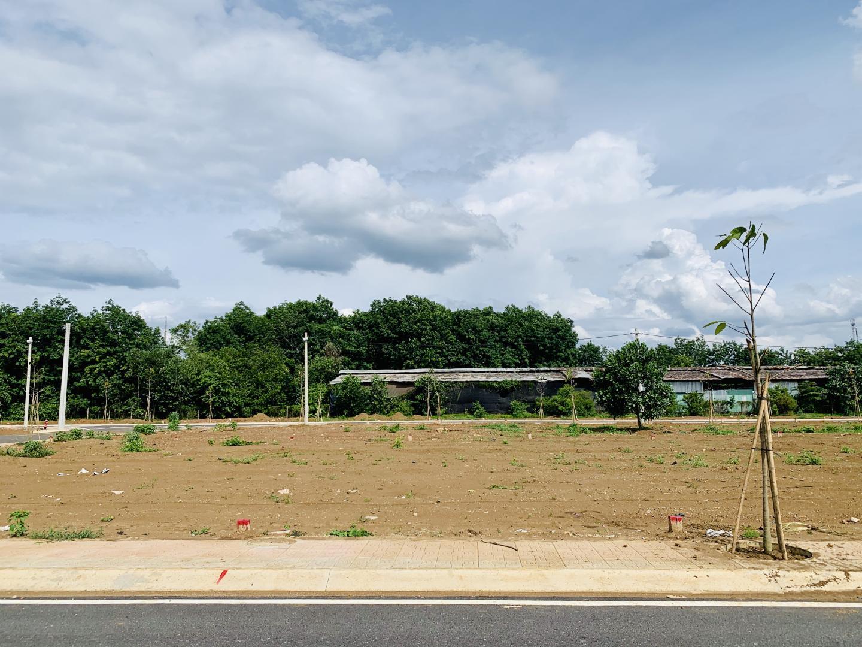 Bán đất 100 m2 thổ cư 515 triệu  ngay DT741 Đồng Phú - BP đối diện KCN Hà Mỵ image-thumb-1